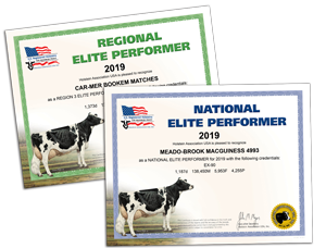 Regional and National Elite Performer