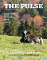 Holstein Pulse: Fall 2018