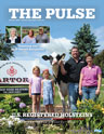 Holstein Pulse: Summer 2020