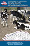 How to Read an Official Holstein Pedigree